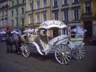 Piękna dorożka na krakowskim rynku