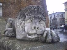 Lew przed wieżą krakowskiego ratusza
