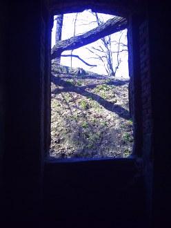Fort - widok z frontowych okien