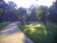 Park w Leśnicy