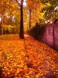 Pierwsze oznaki Jesieni
