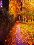 Dalej Jesień…