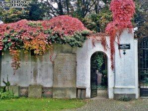 Stary Cmentarz Żydowski, Wrocław (1)