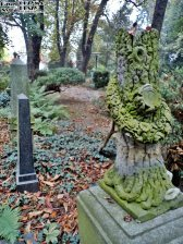 Stary Cmentarz Żydowski, Wrocław (12)