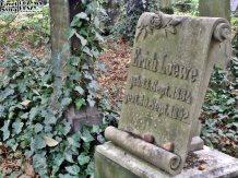 Stary Cmentarz Żydowski, Wrocław (14)