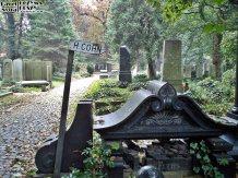 Stary Cmentarz Żydowski, Wrocław (16)