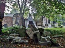 Stary Cmentarz Żydowski, Wrocław (17)