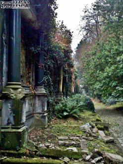 Stary Cmentarz Żydowski, Wrocław (18)