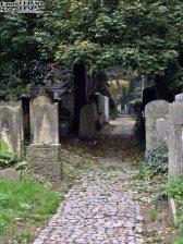 Stary Cmentarz Żydowski, Wrocław (2)