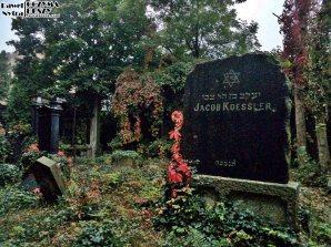 Stary Cmentarz Żydowski, Wrocław (21)