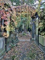 Stary Cmentarz Żydowski, Wrocław (25)