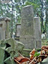 Stary Cmentarz Żydowski, Wrocław (33)