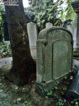 Stary Cmentarz Żydowski, Wrocław (36)