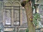 Stary Cmentarz Żydowski, Wrocław (4)