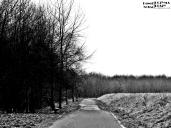 Droga do śmierci