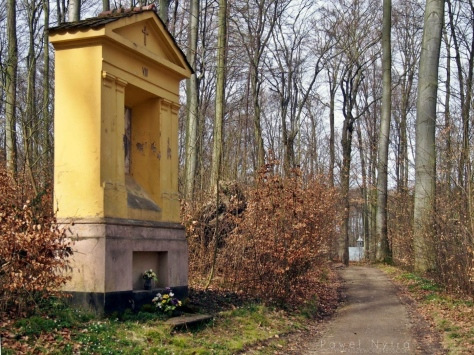 VIII stacja leśnej Drogi Krzyżowej.