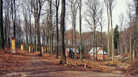 Po lewej cztery stacje leśnej Drogi Krzyżowej w Trzebnicy. Po prawej Kościół leśny Czternastu Świętych Wspomożycieli oraz Grota Matki Boskiej z Lourdes.