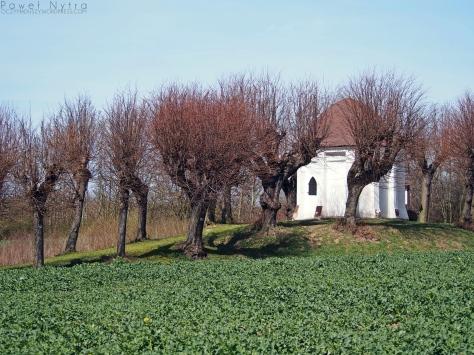 Kaplica św. Jadwigi