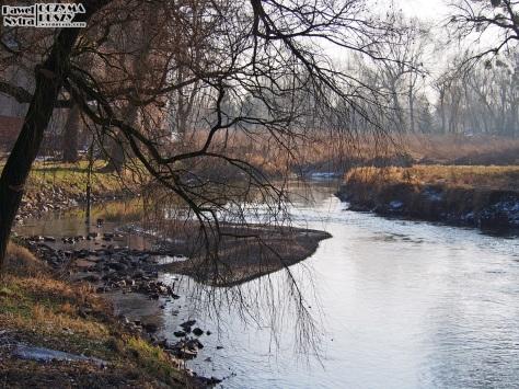 Jedno z wielu leniwych zakoli na rzece - na tą wysepkę można z łatwością wejść!