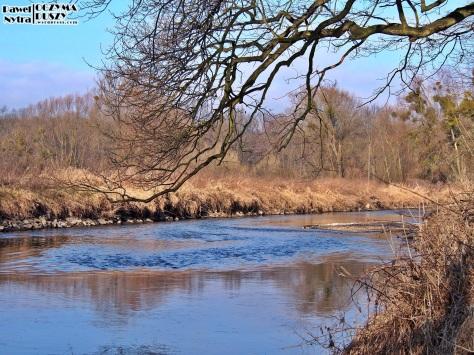 Stalowa rzeka i miedziane zarośla pięknie ze sobą współgrają