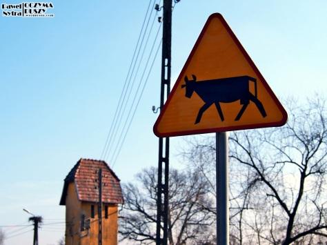 Znak drogowy przy pobliskich zabudowaniach.