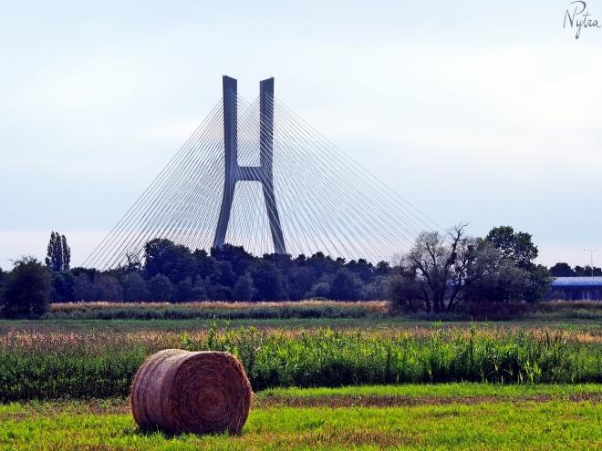 Most Rędziński z nieco innej perspektywy. ;)