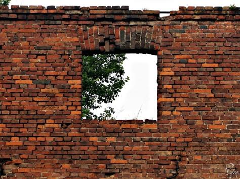 Ruina młynu w Jarnołtowie