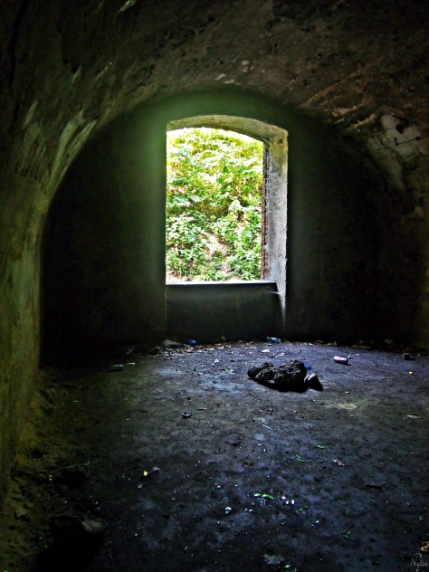 Fort 50 Prokocim