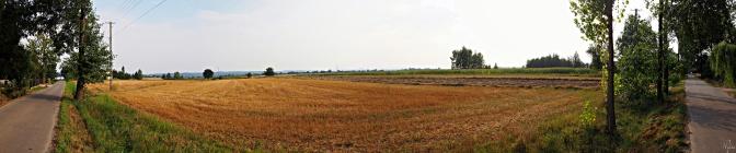 Wiejska panorama