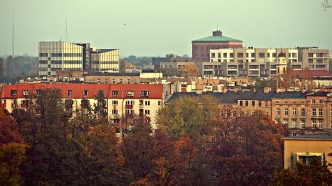 Dachy wrocławskich bloków i kamienic. W tle zabytkowa Wieża Ciśnień.