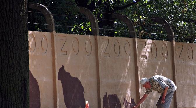 Zoo jak malowane