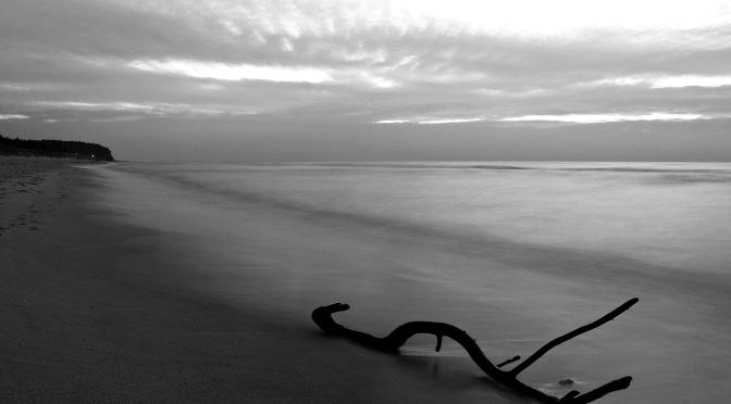 Morza szum